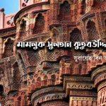 মামলুক সুলতান কুতুবউদ্দিন আইবেক